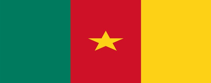 Cameroon Salary Survey | KrollConsultants