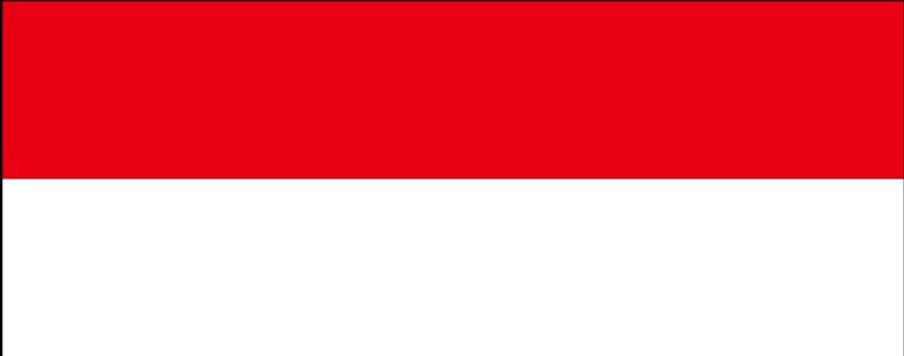 Indonesia Salary Survey | KrollConsultants