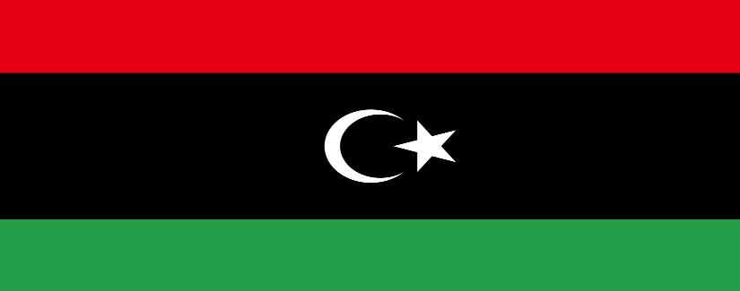 Libya Salary Survey | KrollConsultants