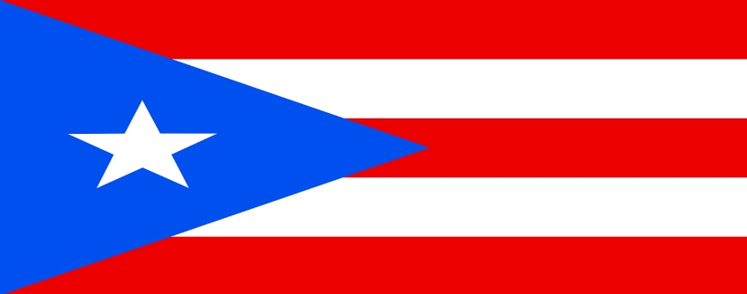 סקר שכר פוארטו ריקו | קרול קונסלטנטס