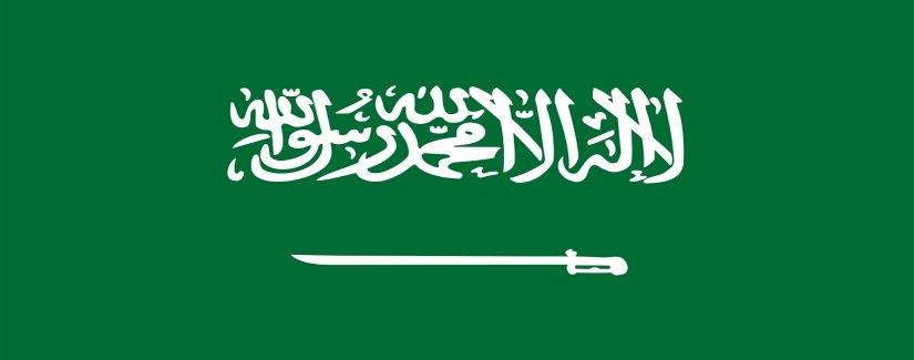 סקר שכר ערב הסעודית | קרול קונסלטנטס