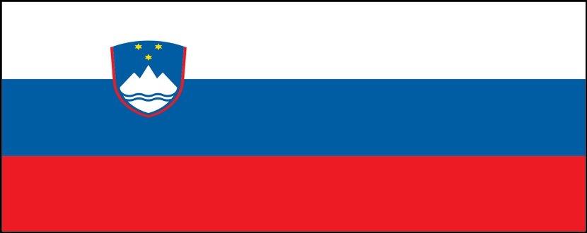 Slovenia Salary Survey   KrollConsultants