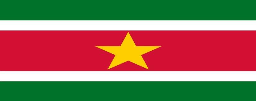 Suriname Salary Survey | KrollConsultants