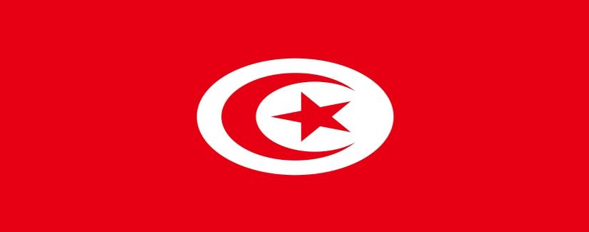Tunisia Salary Survey | KrollConsultants