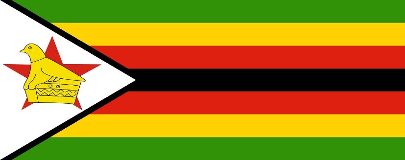 סקר שכר זימבבואה | קרול קונסלטנטס